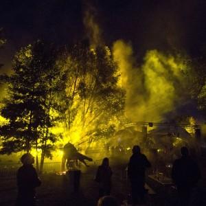 Illumination der Baumkronen