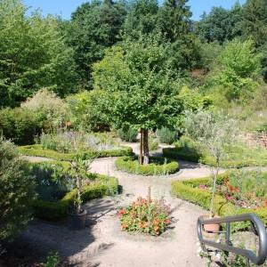 Biblischer Garten